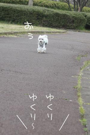 3_31_3489.jpg