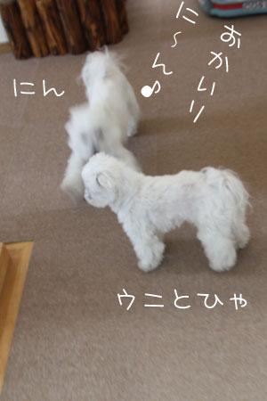 4_10_4951.jpg