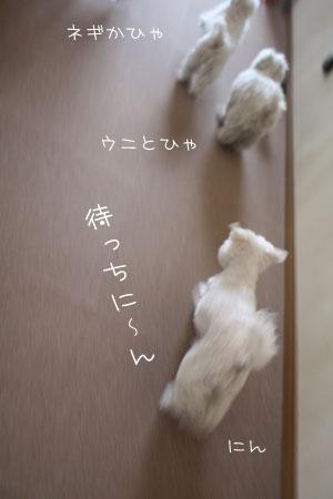 4_19_6102.jpg