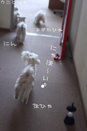 4_19_6108.jpg