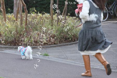 4_1_3790.jpg