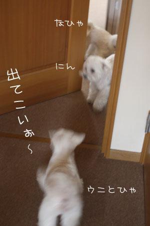 4_22_6288.jpg