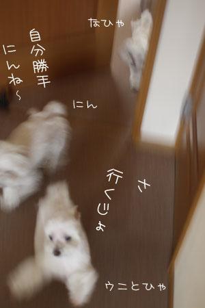 4_22_6290.jpg
