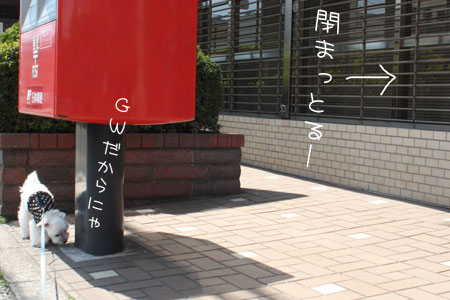 4_29_6813.jpg
