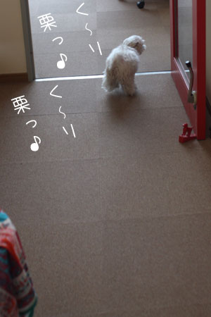 4_29_6862.jpg