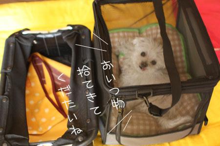 4_30_6896.jpg