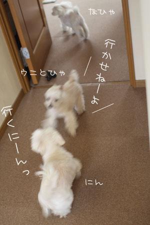 4_30_6944.jpg