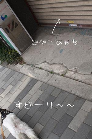 4_30_6973.jpg