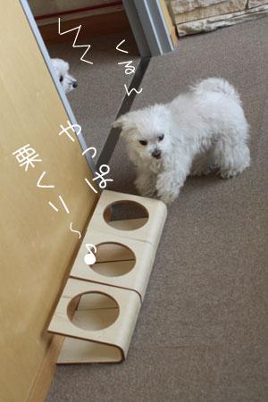 4_30_7043.jpg