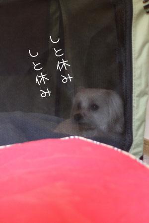 4_30_7054.jpg
