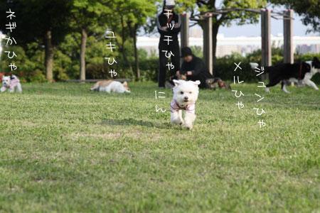4_30_7530.jpg
