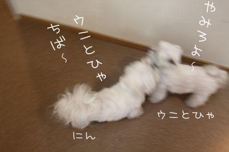 4_4_4218.jpg