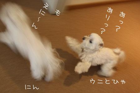 4_4_4222.jpg