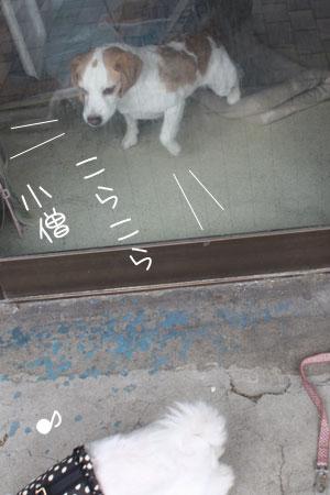 5_10_8167.jpg