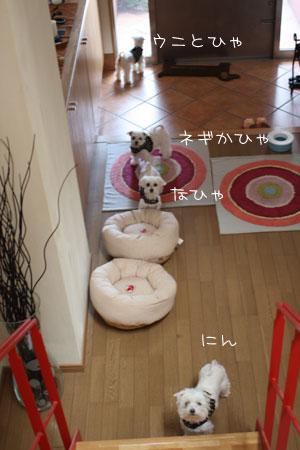 5_12_8792.jpg