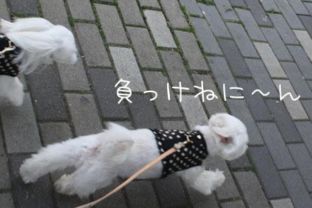 5_14_8648.jpg