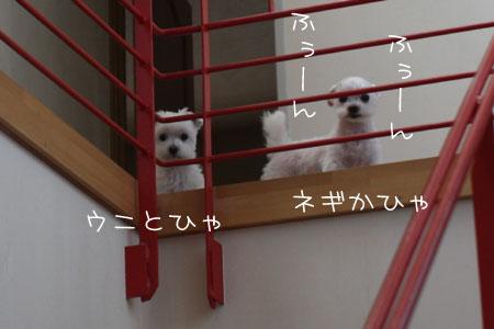 5_14_8711.jpg