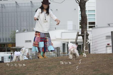 5_14_9215.jpg