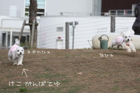 5_14_9249.jpg