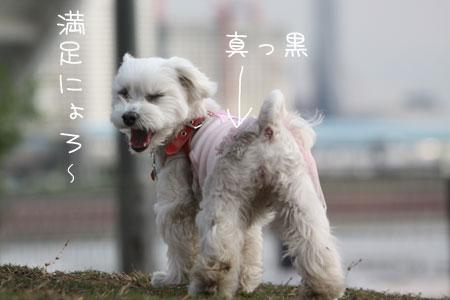 5_14_9258.jpg