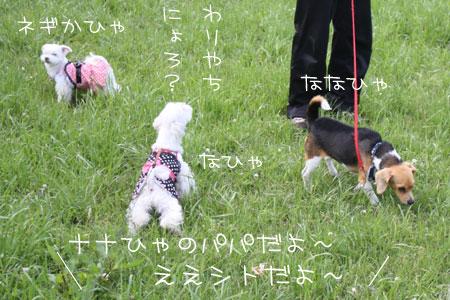 5_18_0047.jpg