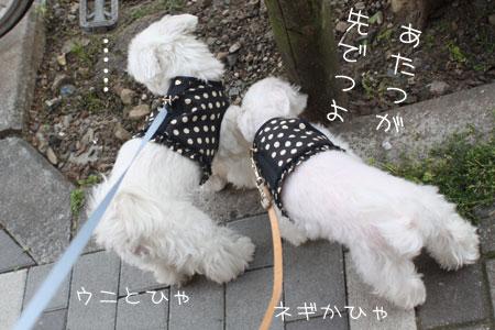 5_18_9102.jpg