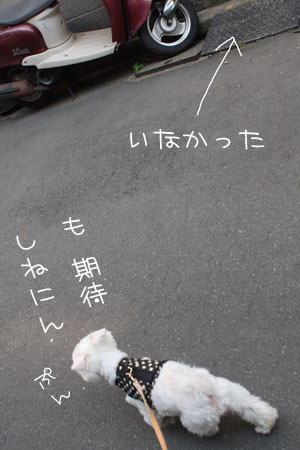 5_18_9199.jpg