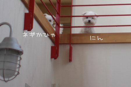 5_24_9475.jpg