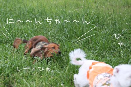 5_31_2015.jpg