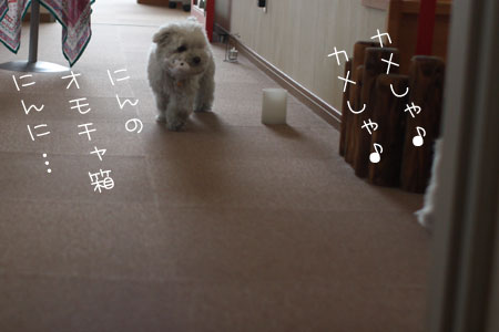 5_7_5419.jpg