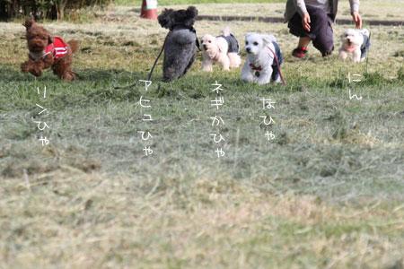 6_10_4192.jpg