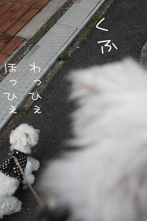 6_14_1509.jpg