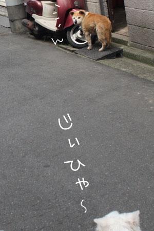 6_1_0437.jpg