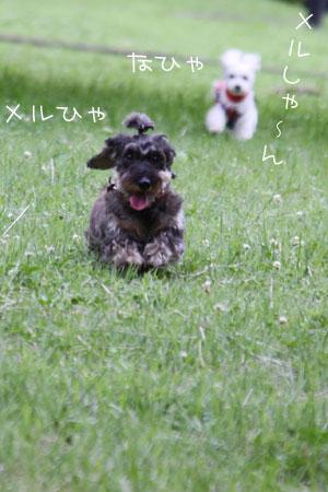 6_20_5345.jpg