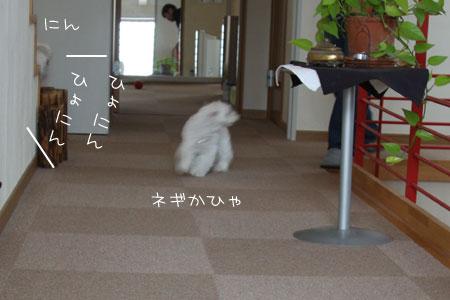 6_26_5828.jpg