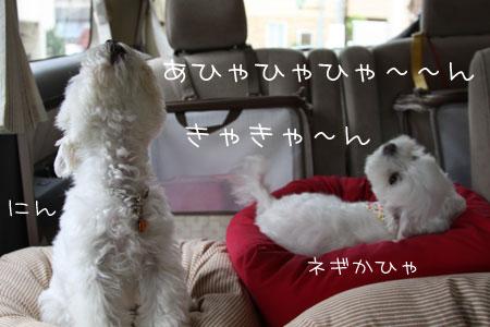 6_26_5863.jpg
