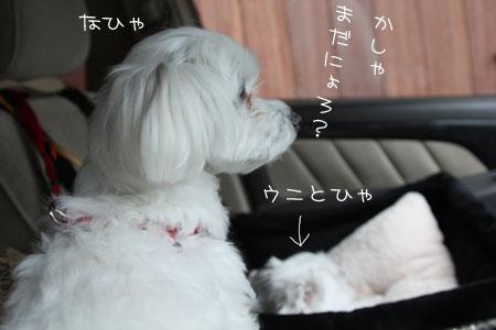 6_26_5865.jpg