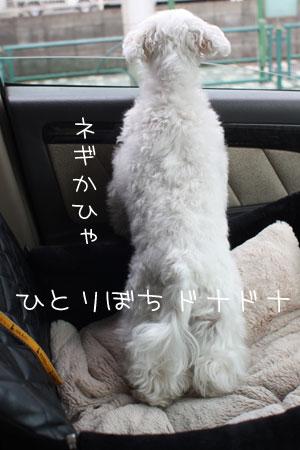 6_28_5941.jpg