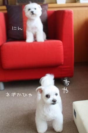 6_28_5988.jpg