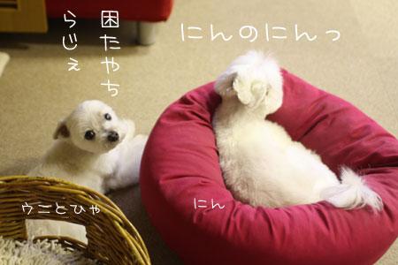 6_29_6111.jpg