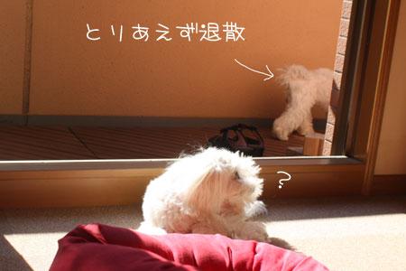 7_11_2682.jpg