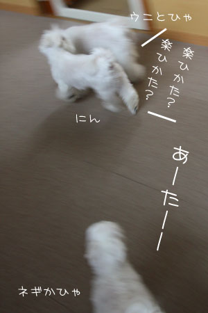7_12_7631.jpg