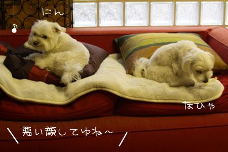 7_12_7641.jpg