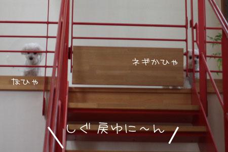 7_13_7674.jpg