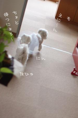 7_13_7680.jpg