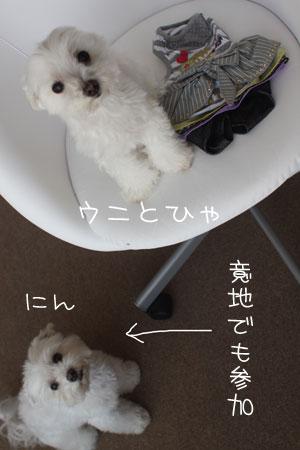 7_15_2610.jpg