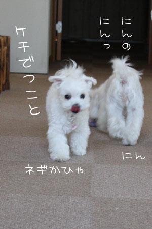 7_22_8653.jpg