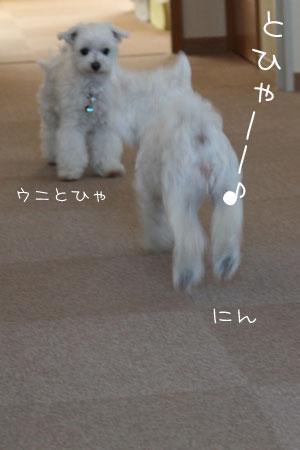 7_23_8786.jpg