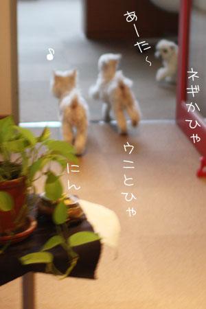 7_8_7160.jpg
