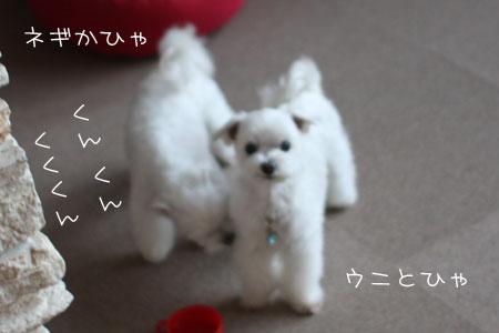 7_8_7172.jpg